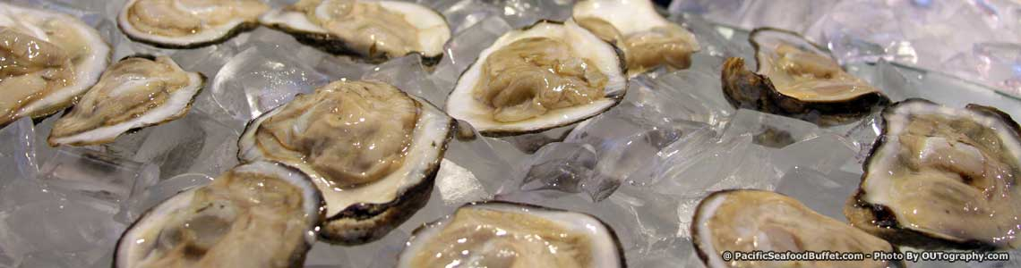 Iced Oyster